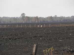Rappville bushfire