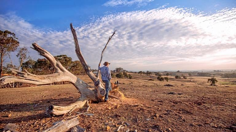 HELP IS COMING: During October Service NSW will be visiting rural and regional centres, such as Tenterfield, with resources to support them as communities struggle with one of the worst droughts on record.
