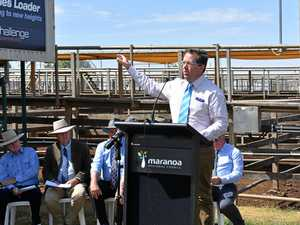 Politics put aside for the success of Roma Saleyards
