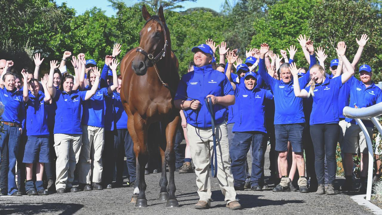 The Godolphin team salute the stable's Everest contender Alizee. Picture: Lisa Grimm