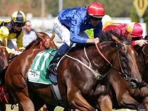 Alizee to lead Blue Army's  Everest bid