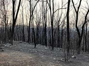 The forgotten town in bushfire catastrophe