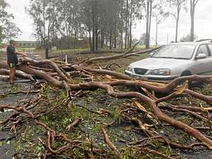 REVEALED: Gympie second-worst region in state for damage