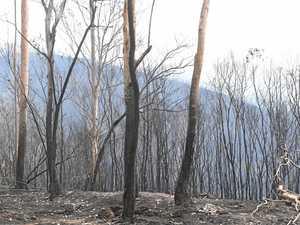 Ewingar firestorm