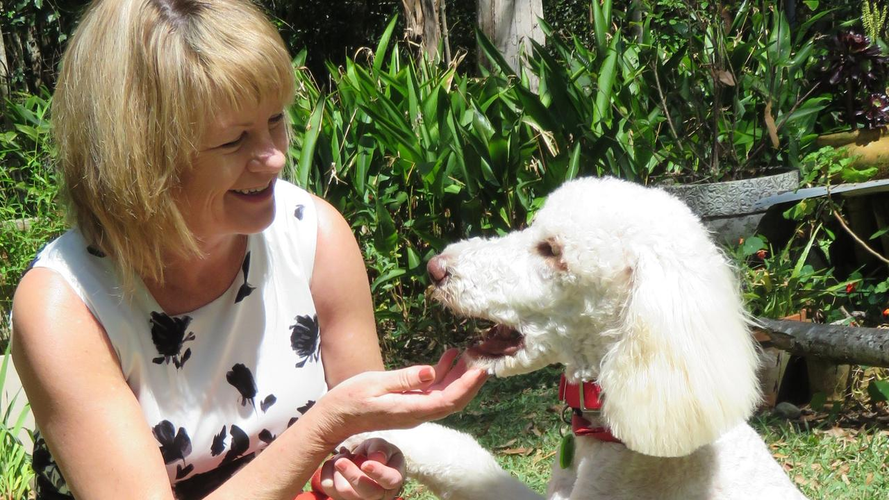 Wellbeing coach Carol Gollschewsky with wellbeing dog Angel at their Lake Macdonald home.
