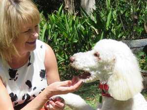 Noosa's Angel spreads wellbeing