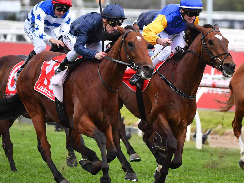 Cape Of Good Hope (left) gets the better of Black Heart Bart to win the Caulfield Stakes.