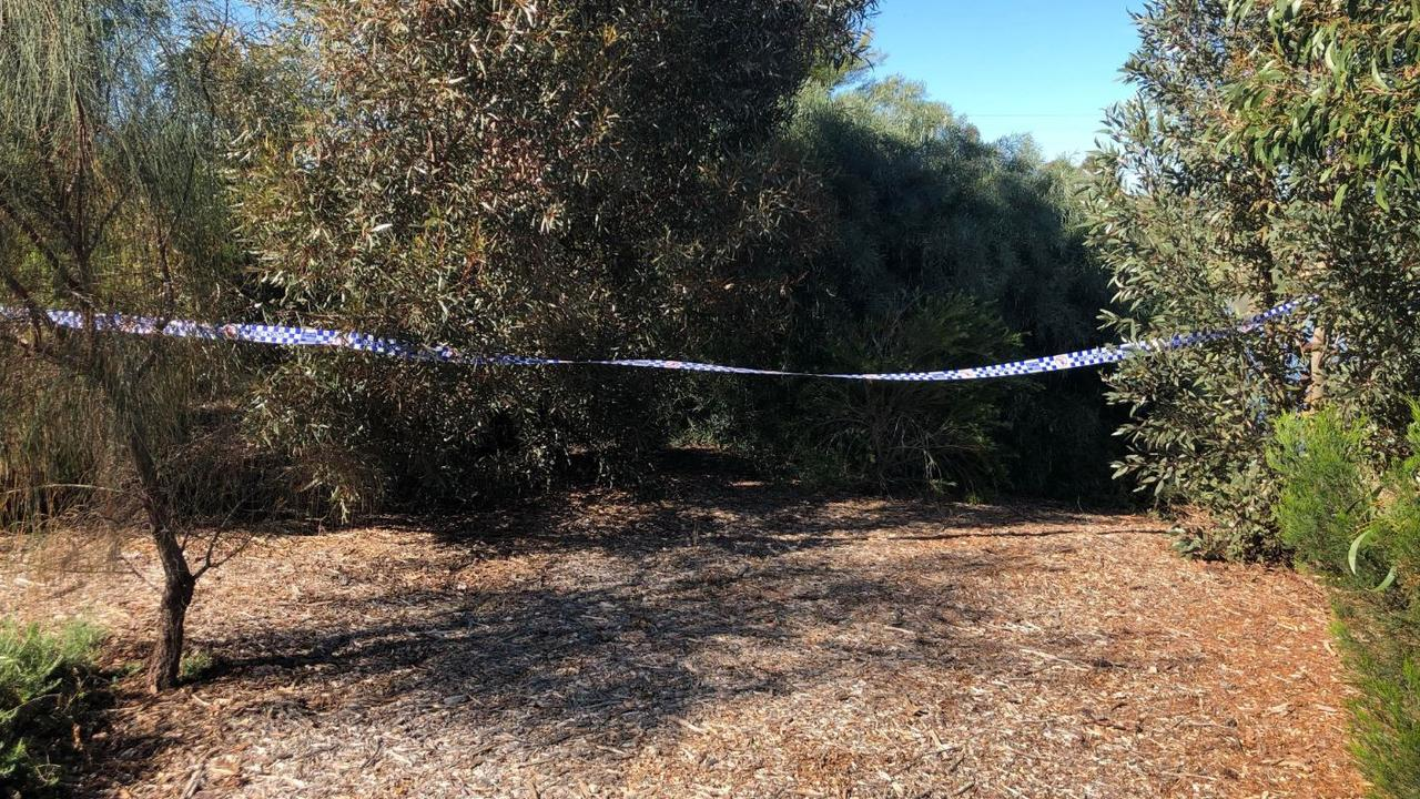 The crime scene at Munno Para where a woman was sexually assaulted in a wetlands area.
