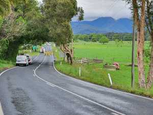 Fatal crash near Bellingen