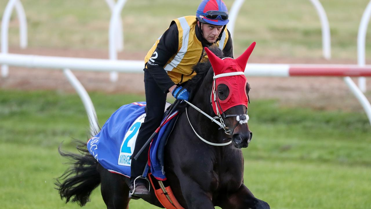 Mirage Dancer put through his paces ahead of the Caulfield Cup.
