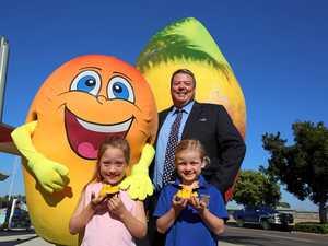 How Festival of Mangoes plan could still bear fruit
