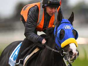 Lane drives Japanese tilt at Caulfield and Melbourne cups