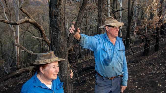 Bushfire devastates back up paddocks, spares house