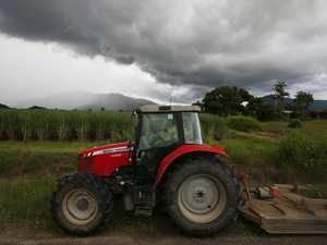 CRUSH REPORT: Storms disrupt cane harvesting