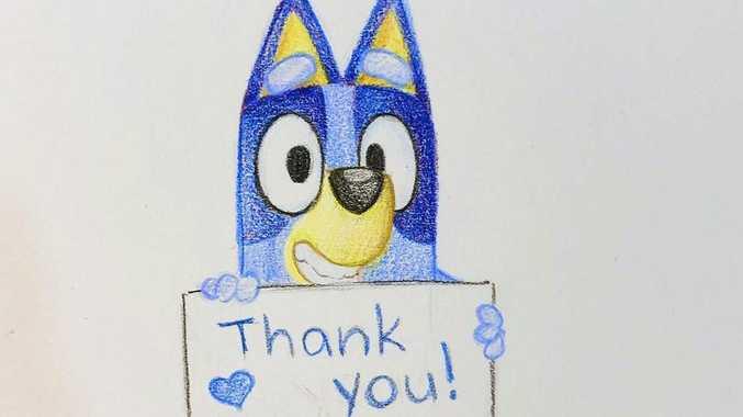 Bluey creator praises Queensland crew