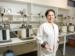 Turning poo into power: How USQ hopes to solve energy issues