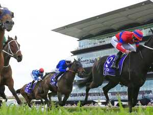 Cox Plate hopes sizzle at The Valley