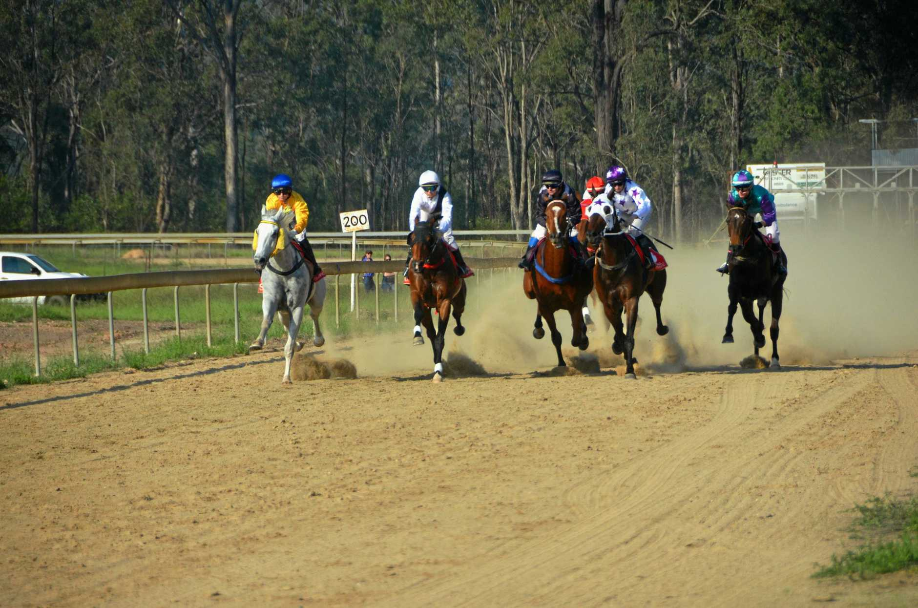 Horses were fast out of the gates in the Wondai Cup race in July.