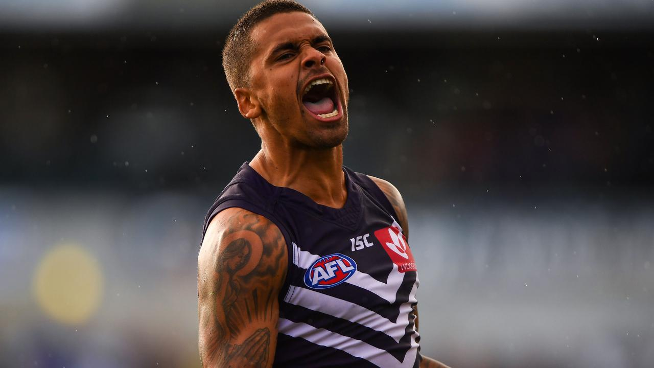 Saints fans are roaring like Bradley Hill after he made his way from Fremantle. Picture: AFL Media/Getty Images
