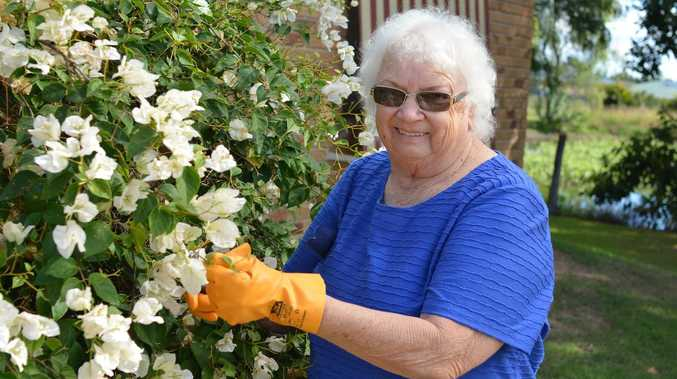 50 years on: Garden club shaped by dry soil, heat