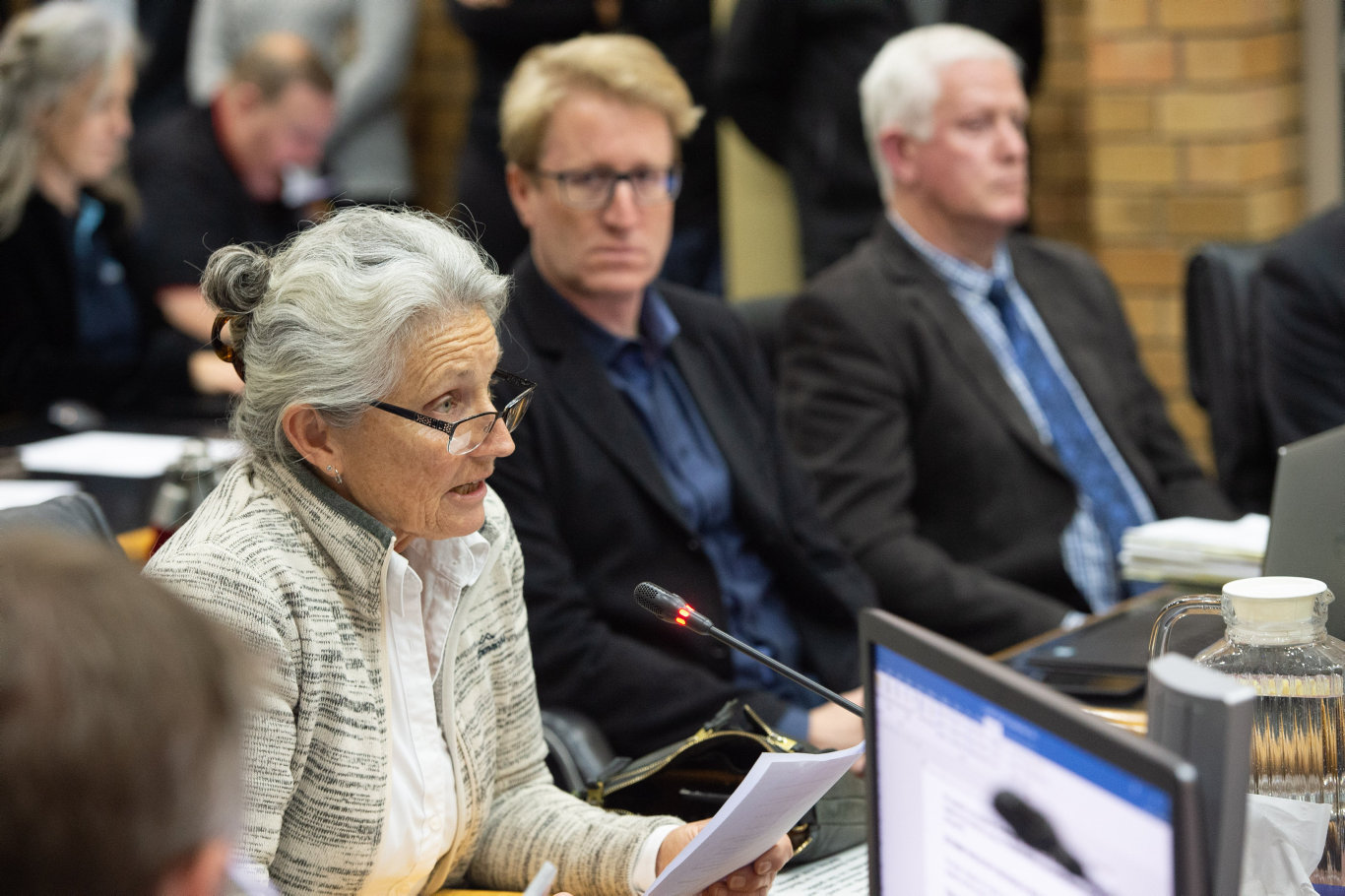 Ann Leonard addresses council over the Civic and Cultural Space development.