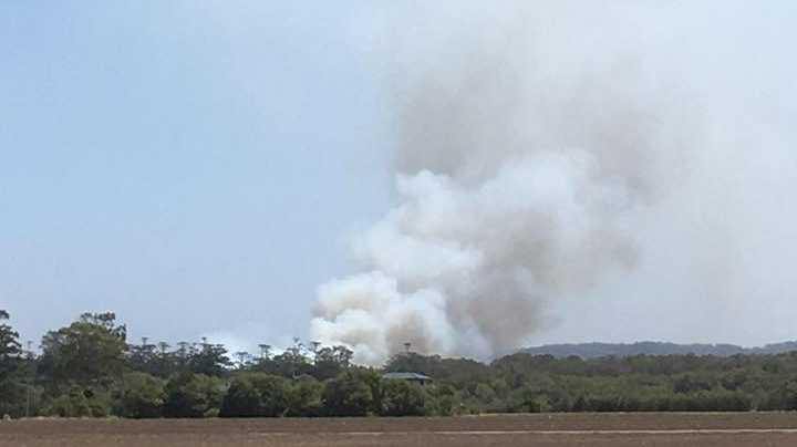 A bushfire is burning near Wardell.