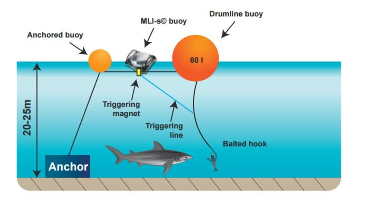 "Diagram: The Catch-A-Live System, Smart Drum Line. A ""classic"" drum line consists of an anchored fishing gear, with a big floating buoy (the ""drum"") at the surface and a baited hook attached to the fishing line. The drumline becomes ""smart"" as soon as it is equipped with the Catch-A-Live system, enabling to get instantaneous alerts in the case of a catch and to retrieve live animals on the hooks."
