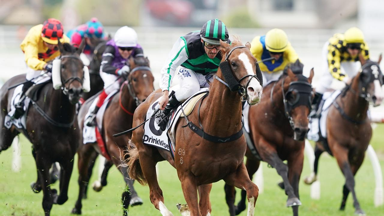 The report comes on the eve of one of the Spring Carnival's biggest days. Picture: AAP