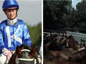 'He's dead!': Jockey after racehorse brutally killed