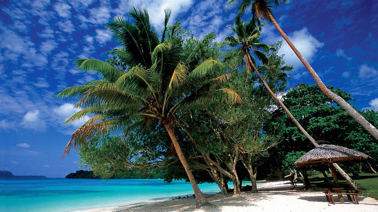 Palm trees on a Vanuatu beach.