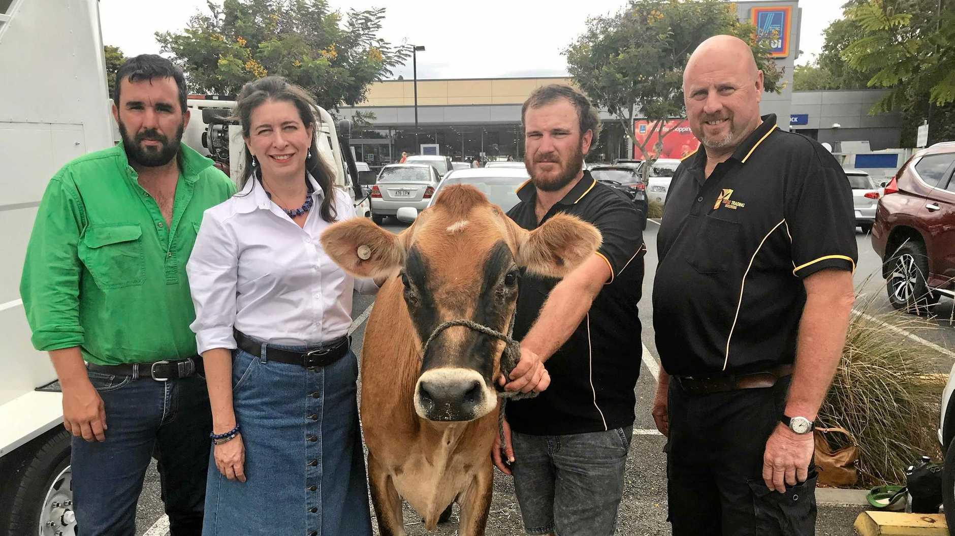 MILK PRICES: Coolabunia dairy farmer Damien Tessmann, Queensland LNP Senator Susan McDonald, Beaudesert dairy farmers Craig Brook and Brad Teese.