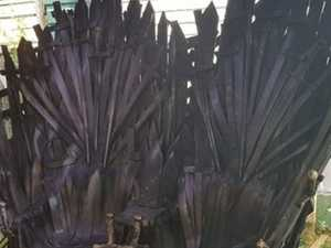 Game of Thrones fan turns passion into profit
