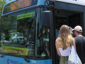 Free Noosa holiday buses to run again