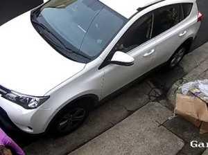 Mystery poo jogger 'not doing well' as Roxy slammed