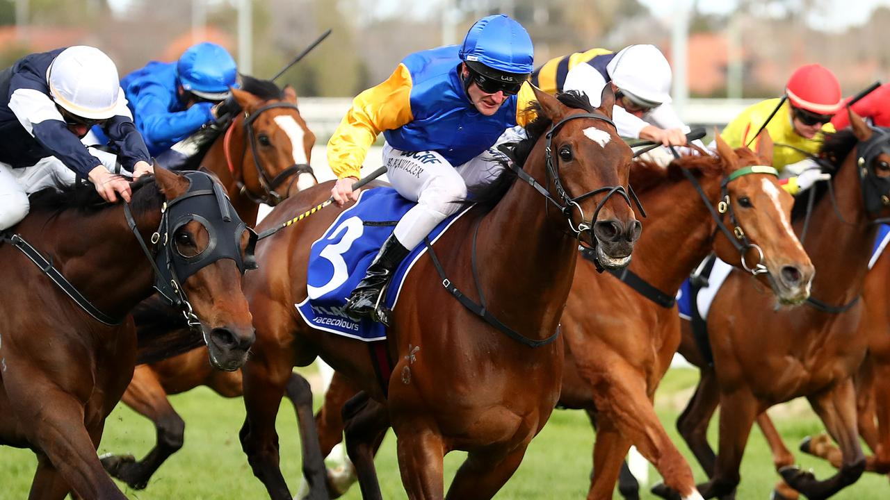 Black Heart Bart wins the Underwood Stakes. Picture: Getty Images