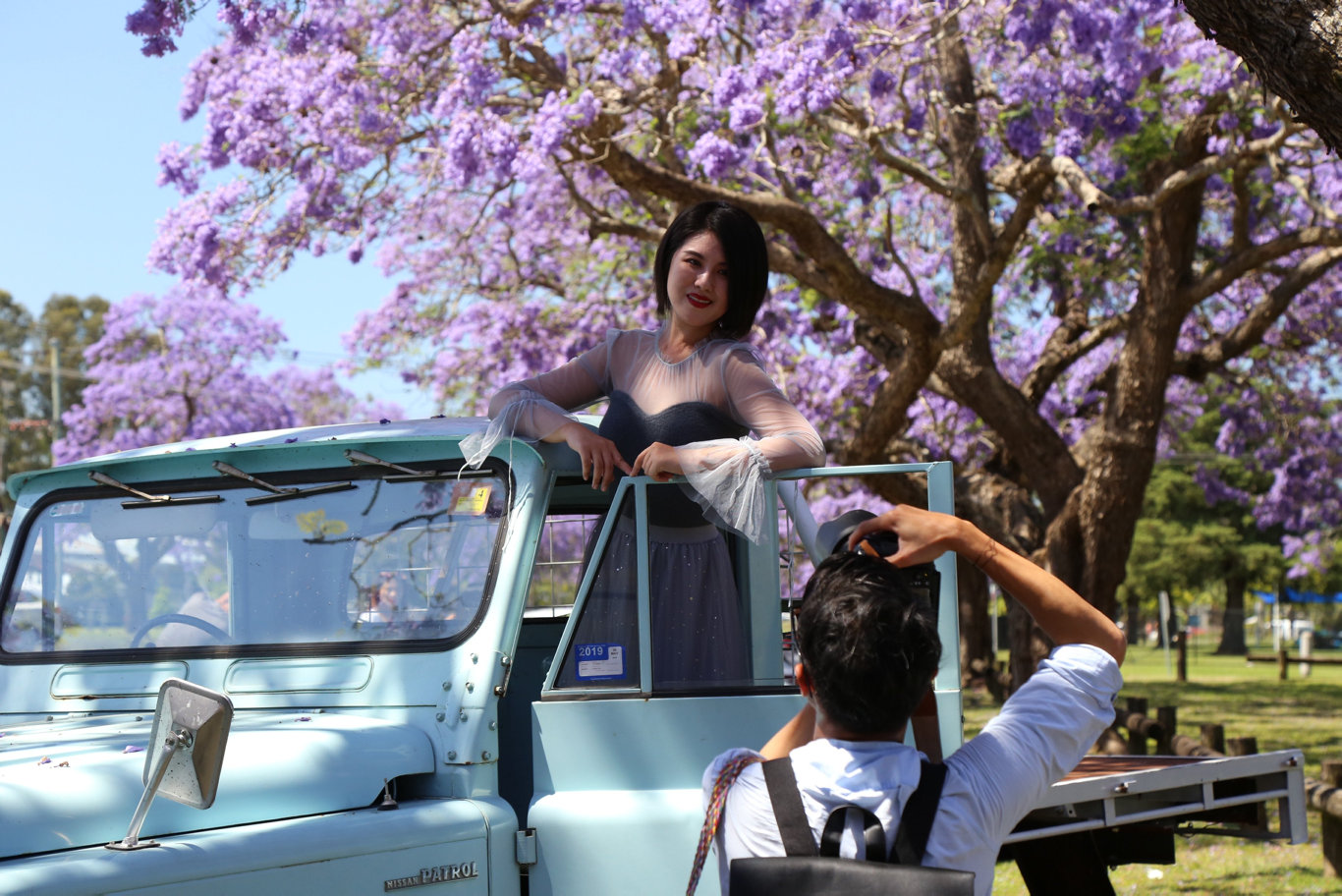 'Get off the $%#@ing road!' Ah, the sweet sounds of Jacaranda ring out once more
