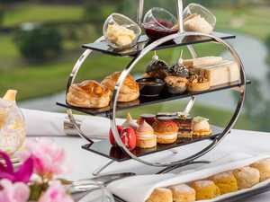 High tea to raise funds for Greenlands P & C