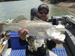 Bounty fishers reel in the big barramundis