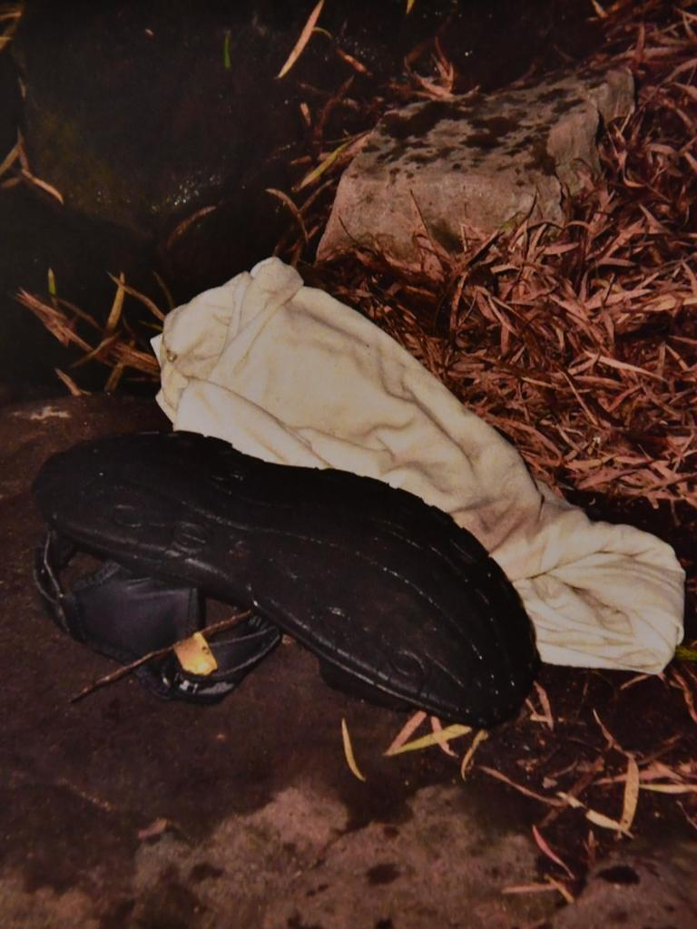 Dansie's shoes and clothes were found on the western side of the pond. Source: Supreme Court.