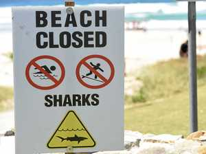 What people do to avoid shark encounters