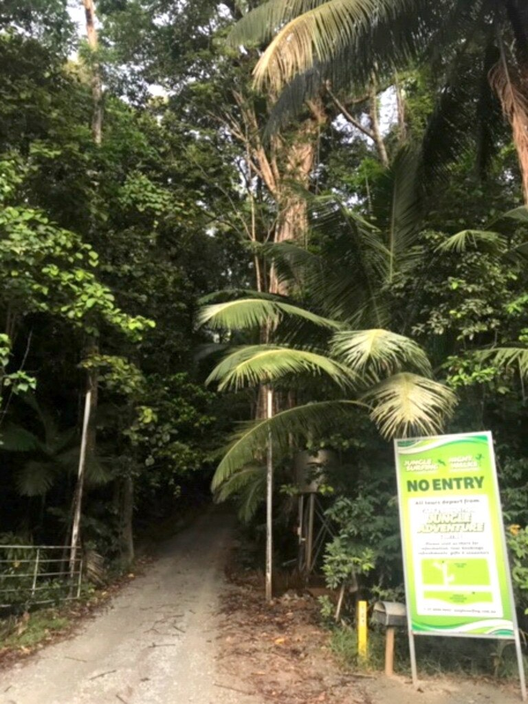 Jungle Surfing Canopy Tours will co-operate with authorities to investigate the incident. Picture: Peter Michael