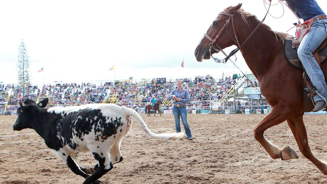 An animal activist group has called on the State Government to ban calf roping in Queensland. PICTURE: JUSTIN BRIERTY