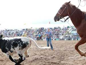 Bid to ban 'cruel' rodeo calf sport ahead of rodeo finals