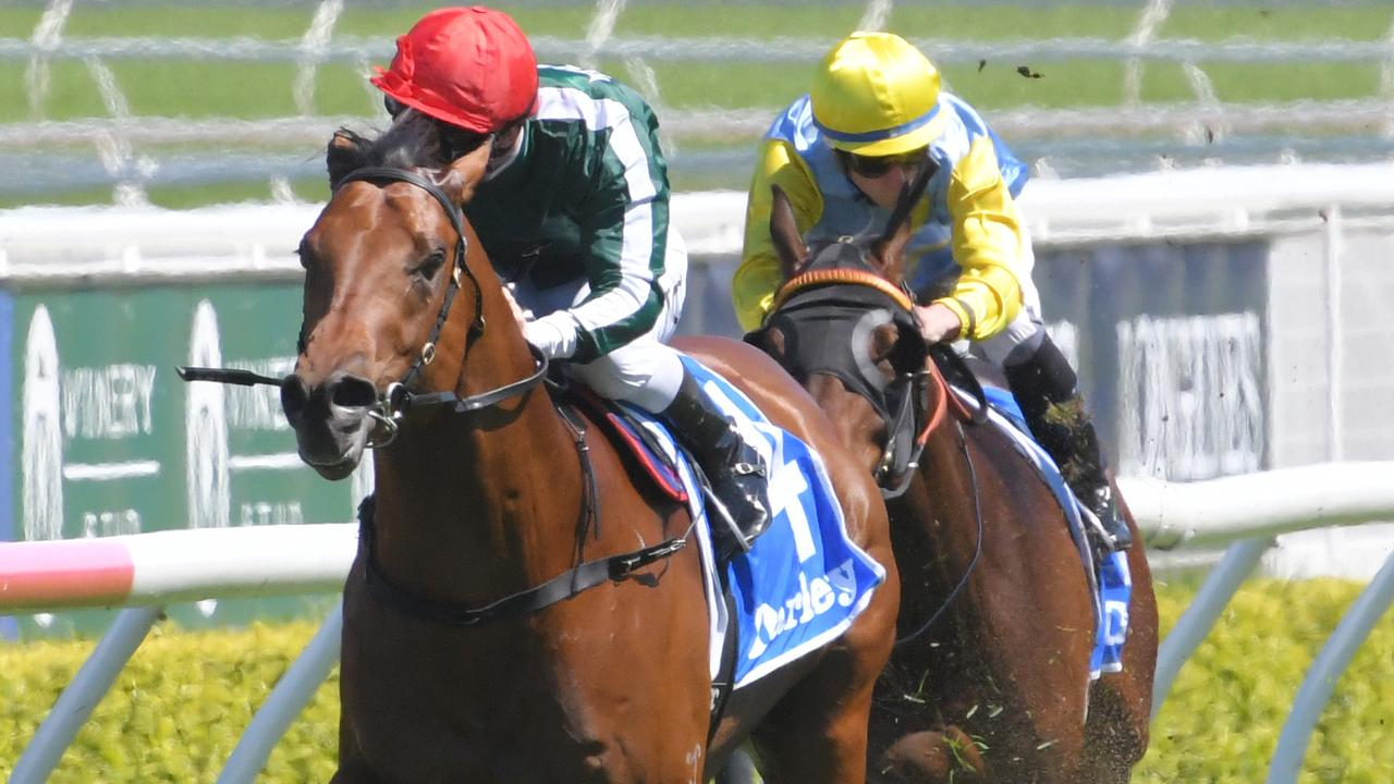 Faretti scored an impressive first-up win on the Kensington track at Randwick. Picture: AAP