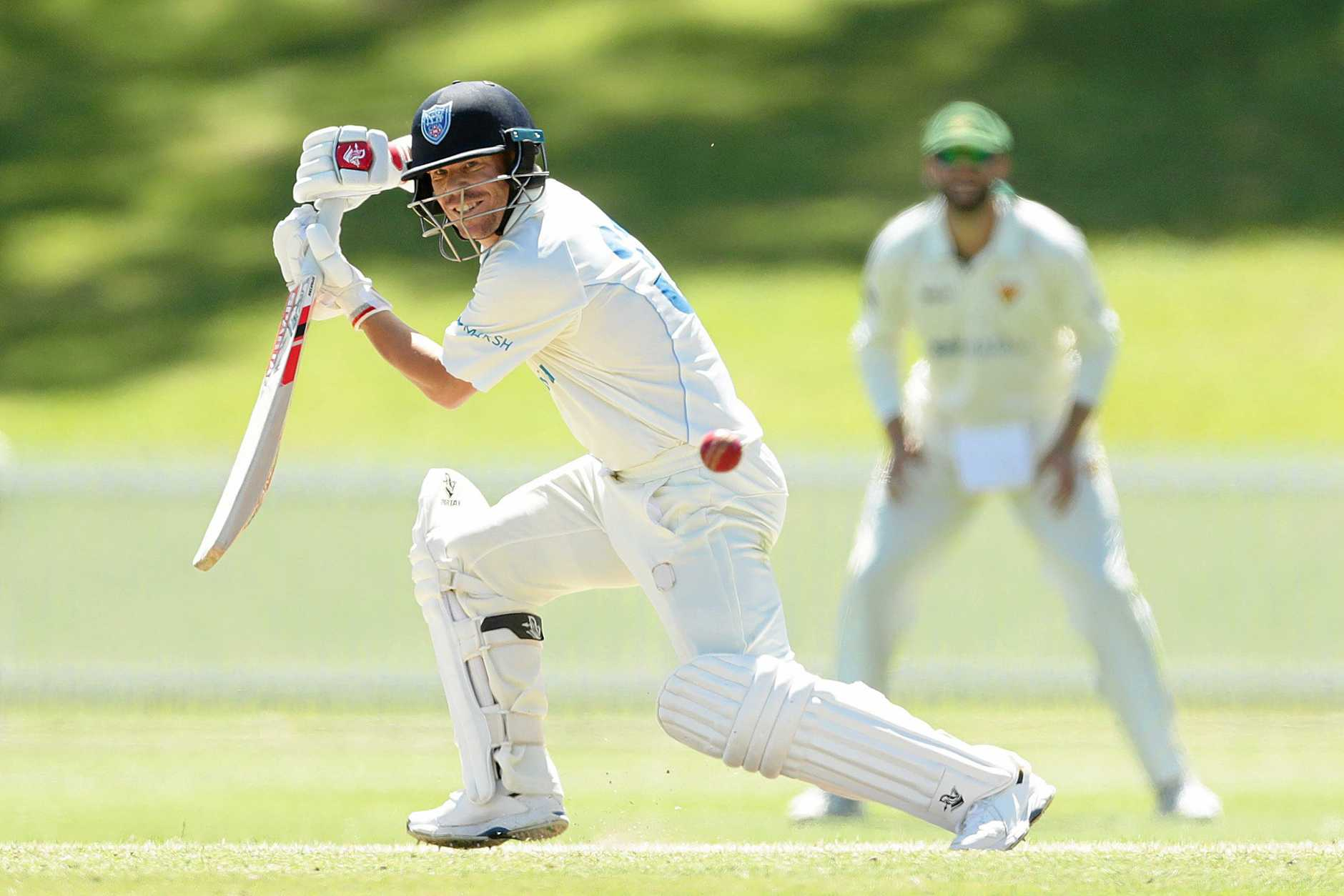 Warner has enjoyed some success in the Sheffield Shield.