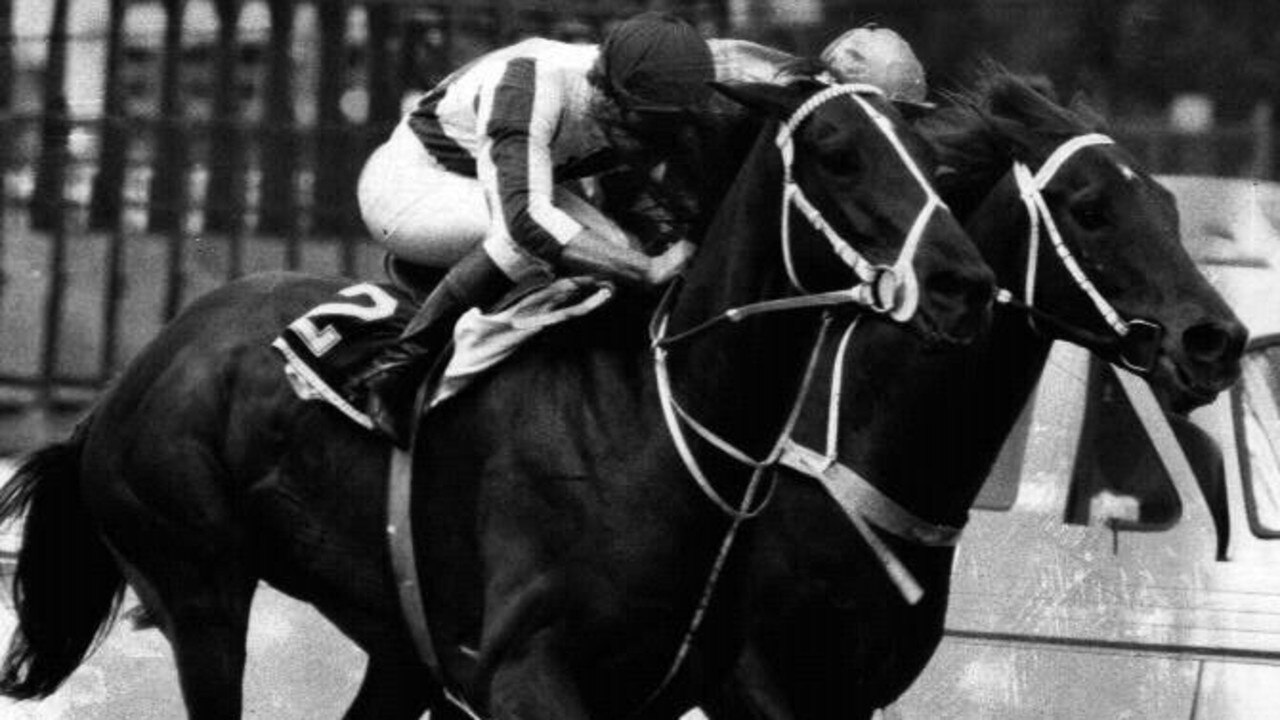 Bonecrusher (left) and Our Waverley Star (right) battle for first place in the 1986 W.S. Cox Plate at Moonee Valley.