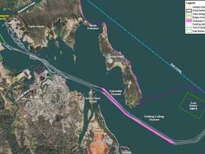 Environmentalist against port project