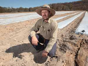 'In a word, it's horrific': Farmers abandon hope