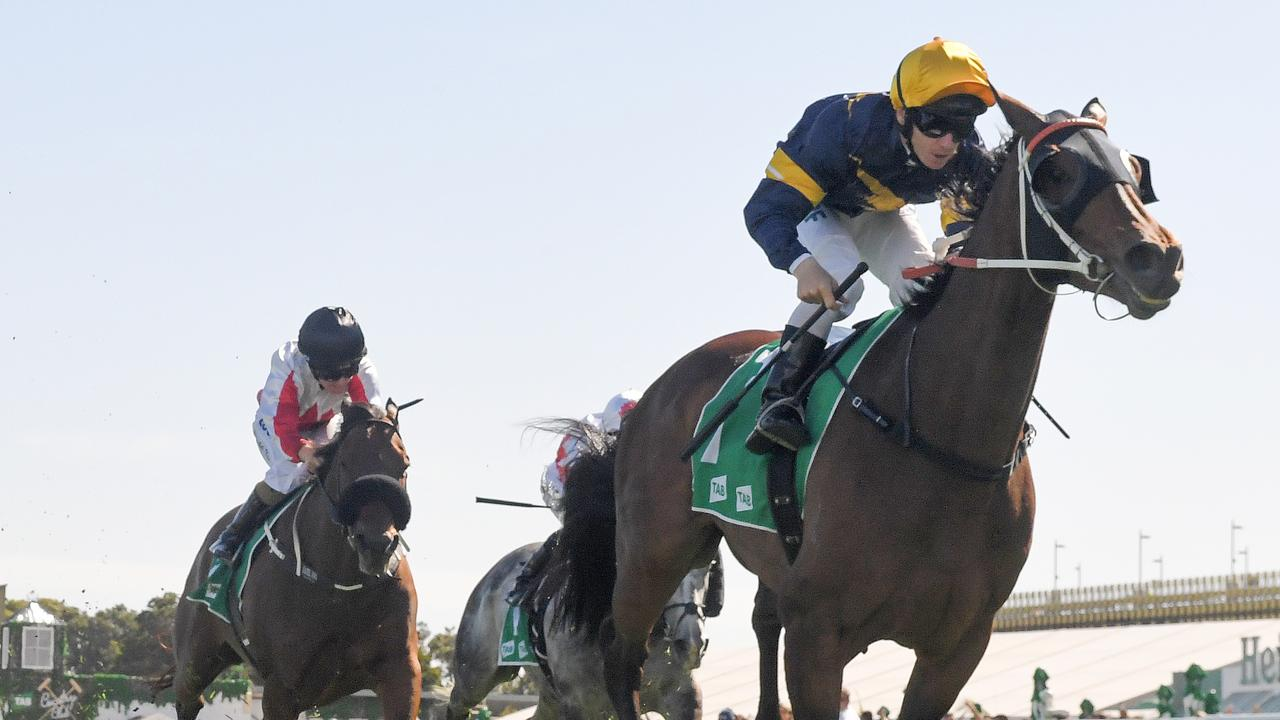 This year's Melbourne Cup has come too soon for Tattersalls Club Cup winner Master Of Wine. Picture: AAP