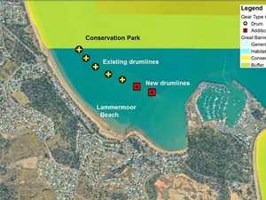 Capricorn Coast  no closer to getting shark drumlines back